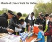 March of Dimes Walk for Babies